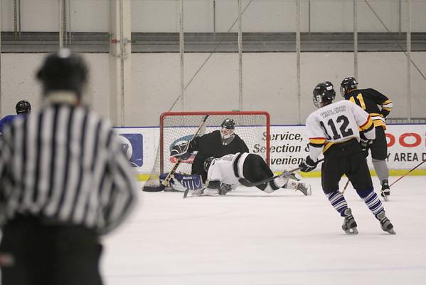 NVIDIA Hockey