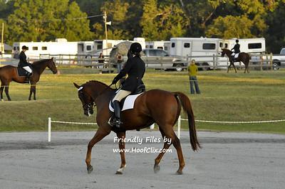 111009 USEA Horse Trial