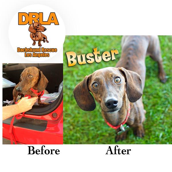 BA_Buster.jpg