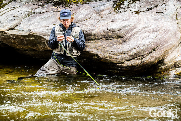 Fly Fishing 05-2019