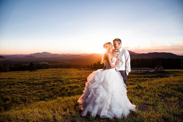 Danielle and Adam   Snowbowl Wedding