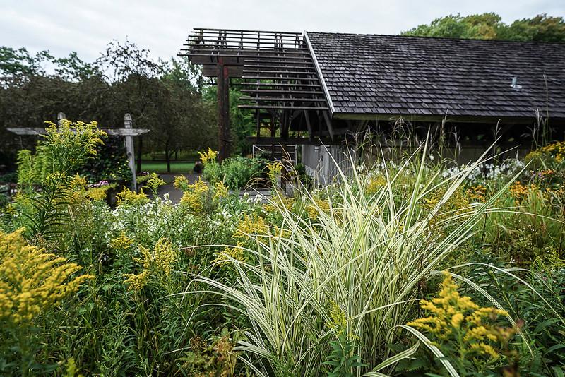 a 8 27 Arboretum-83.JPG