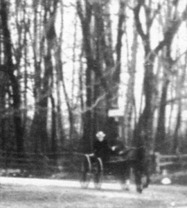 Meeker 1899 -horse and carriage zoom2048.jpg