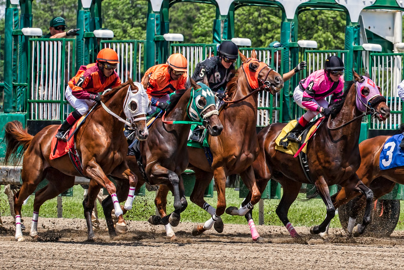 monmouth park horse crash 3507--14.jpg
