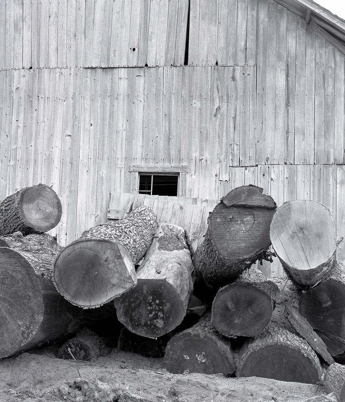 sawmill1.jpg
