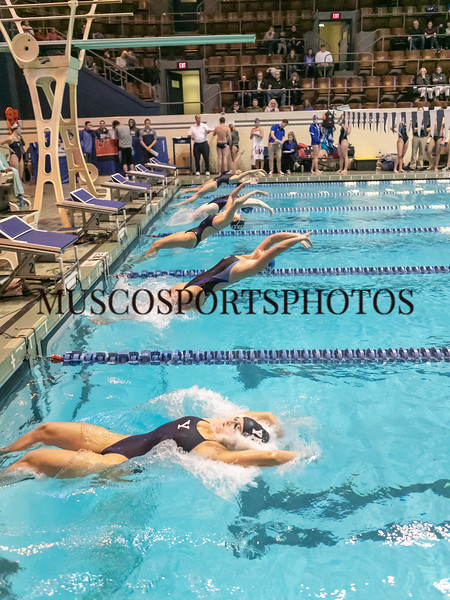 Swimming-diving vs Seton Hall_1005.jpg