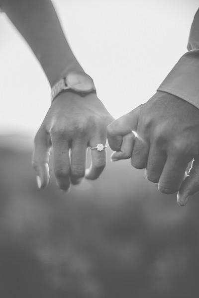 Engagements-462.jpg