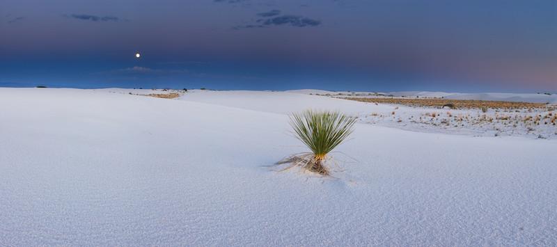 Moonrise on White Sand #2