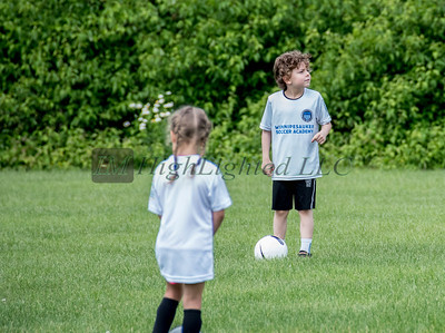 Little D Soccer