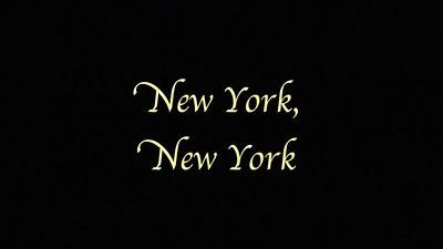 DFAD 2014 New York New York