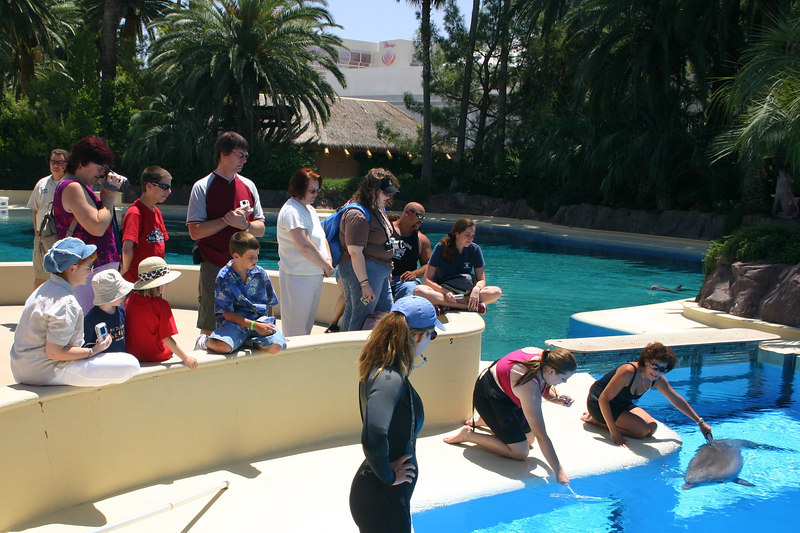 Kathy, Christopher and Sydney (center left) watching a dolphin match shapes at the Dolphin Habitat at the Mirage Casino.