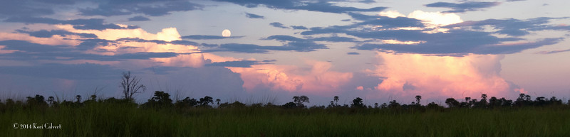 Botswana LandscapeK-2.jpg