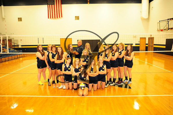 WMS Volleyball pay 2014
