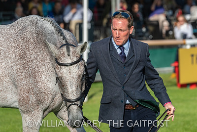 2019-09-04 Land Rover Burghley Horse Trials