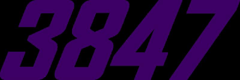 3847 (Purple).png