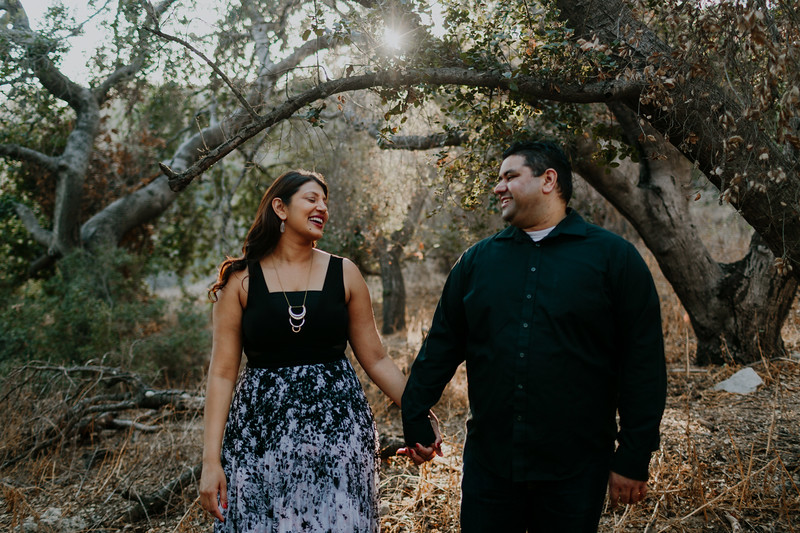 Swapna and Atul Engagement-25.jpg