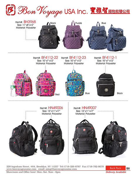 BackPack p101-X2.jpg