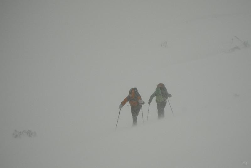 Juhuu, Schnee von allen Seiten!