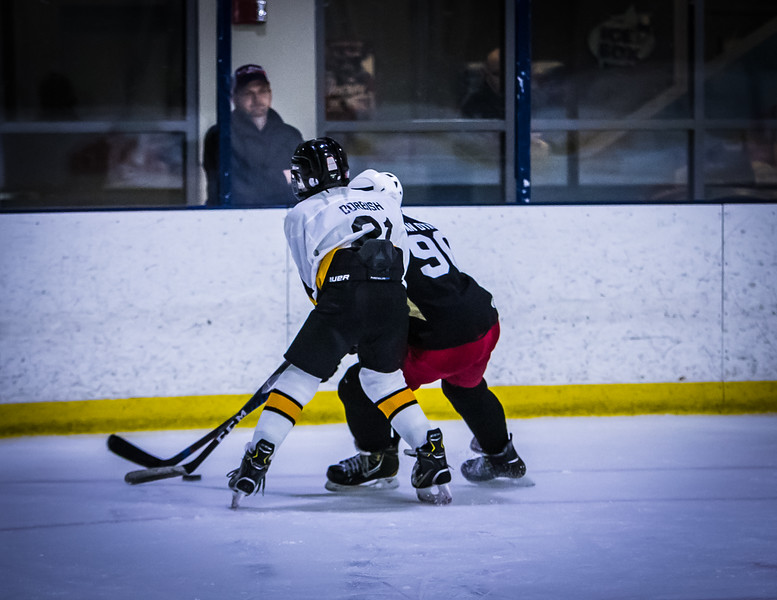 Bruins-168.jpg