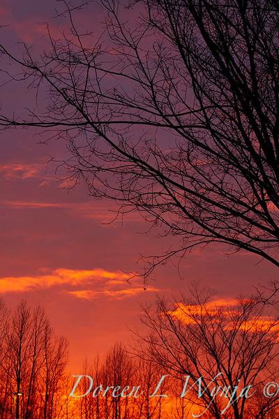 Sunset sky_0127.jpg