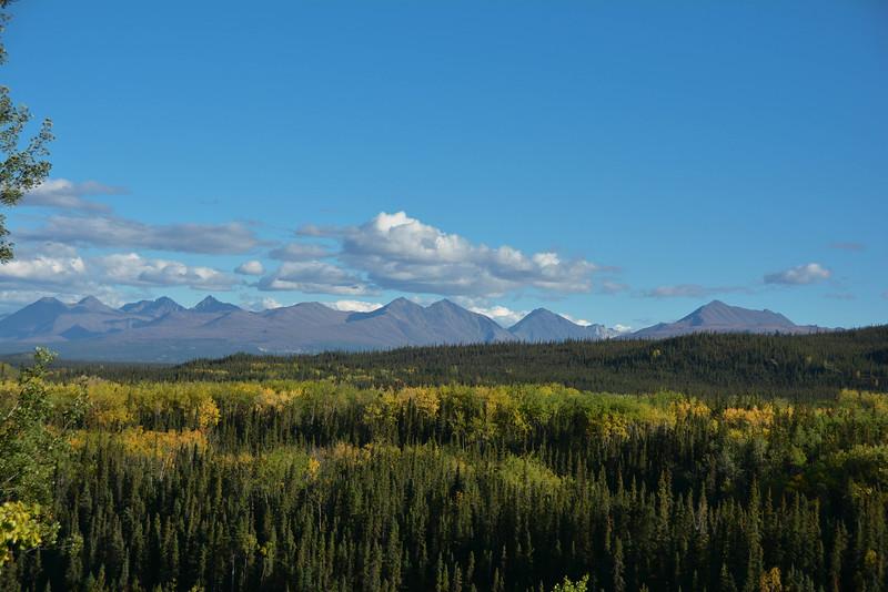 Denali-National-Park-48.jpg