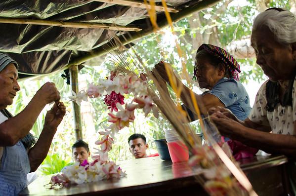 Festival de las flores y palmas