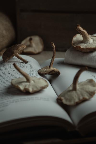 Dark Shitake Mushrooms