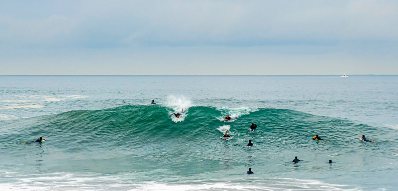 August at the Wedge