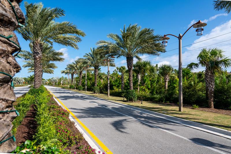 Spring City - Florida - 2019-220.jpg