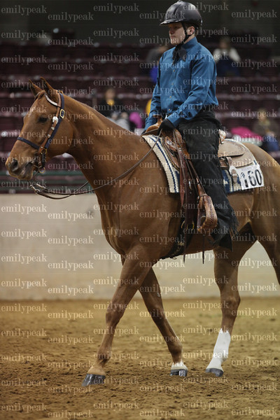2014 Dixie National EWD Show