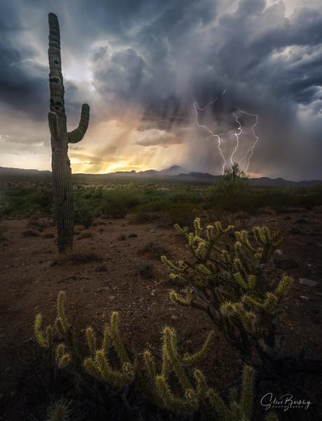 Elemental Arizona