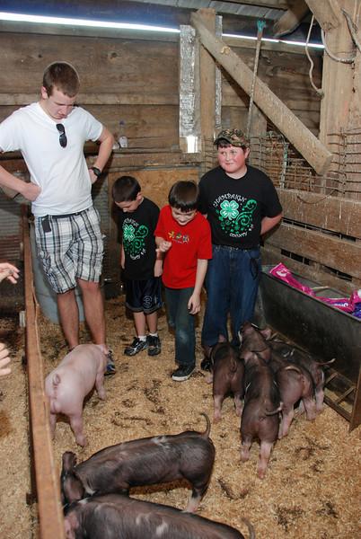 hog farm tour2580.jpg