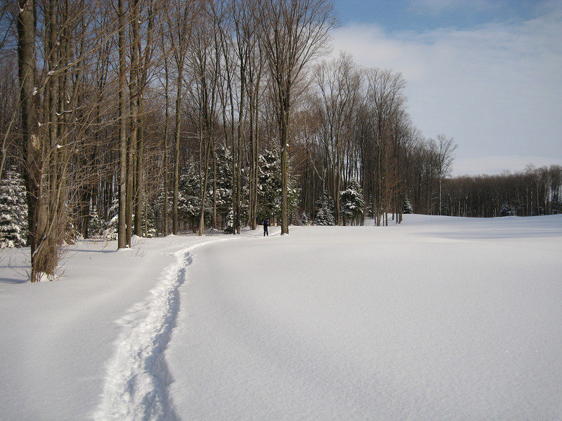 The golf course across the street from us in the wintertime for cross country skiing and snow shoeing