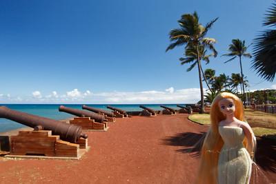 Angélique à la Réunion