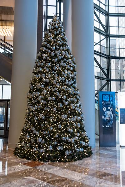 NYC Christmas TourHD (136 of 165).jpg
