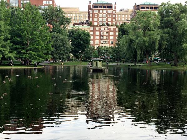 Boston Gardens (July 2017)
