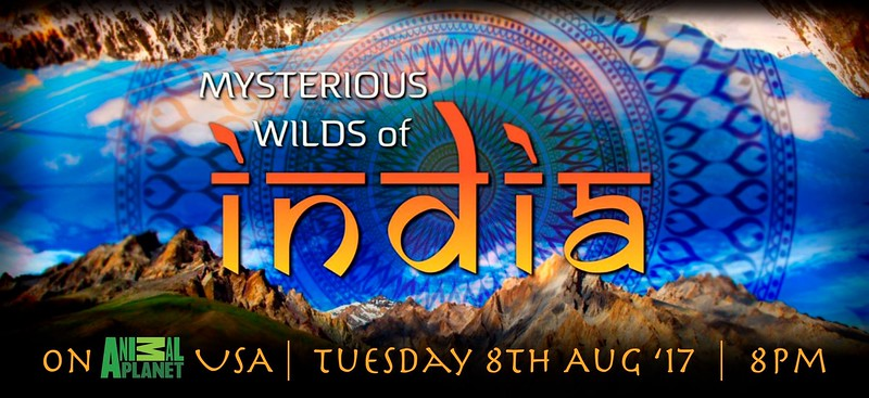 Mysterious_Wilds_Of_India.jpg