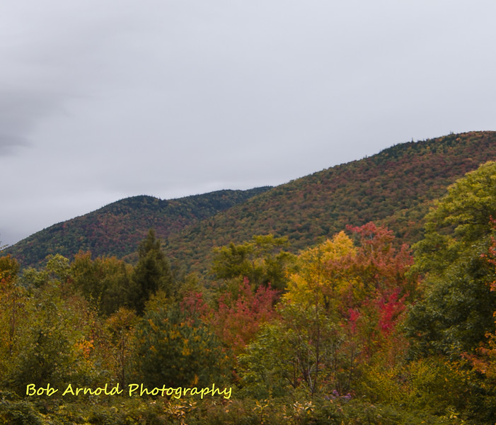 NH Foliage-21.jpg