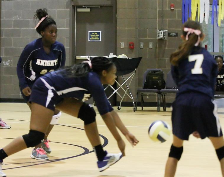 VCA-Volleyball-4.jpg