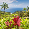 Botanical Garden in Hawaii and the Keopuka Rock Overlook
