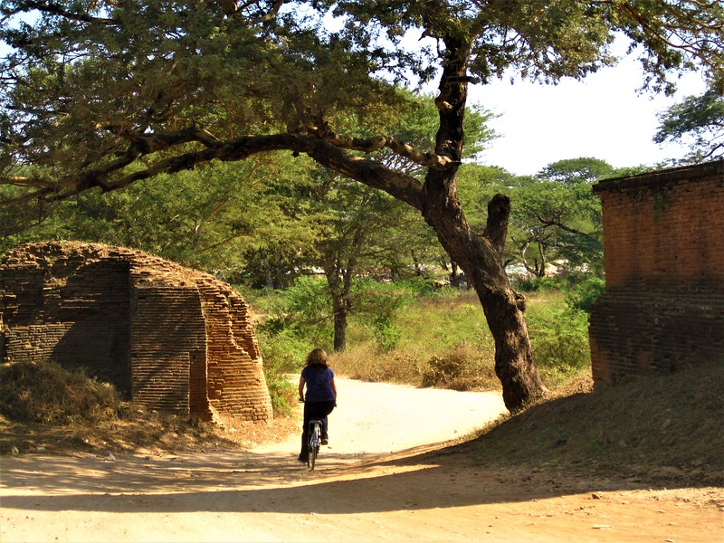 Woman cycling through Bagan temple grounds, shaded by a tree.