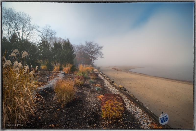 November 10th Foggy Morning