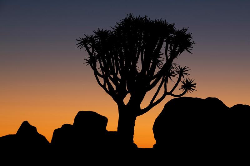 Namibia 69A3678.jpg
