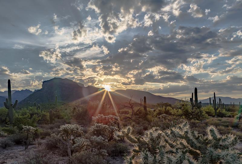 Sabino Sunrise 7-26-2017.jpg