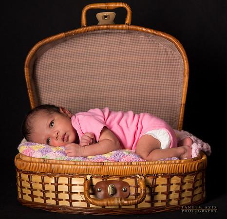 Anisah Newborn, December 2012