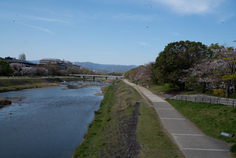 20190411-JapanTour-4781.jpg