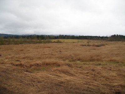 NWESSC Field Trial at Yelm, WA Feb 2008