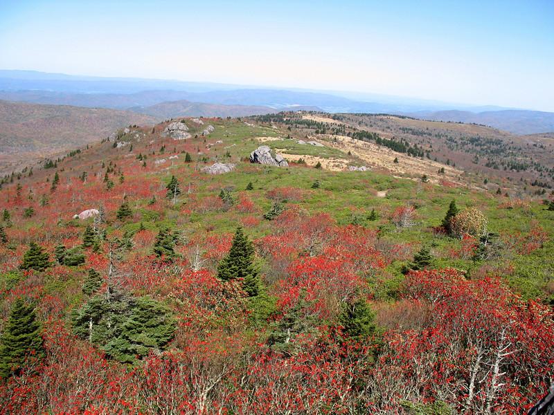 Mt. Rogers & Wilburn Ridge, VA (10-14-06)