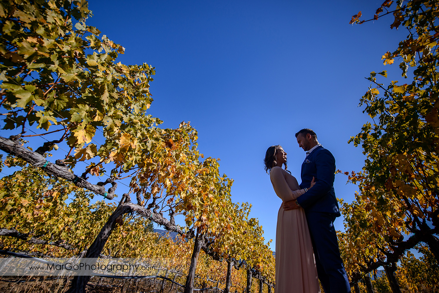 wide angle portrait of woman in pink dress and man in blue suit looking at each other during Napa Valley engagement session at Castello di Amorosa in Calistoga