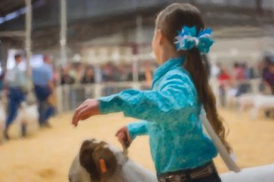 2015 Gerlach Livestock - Goats